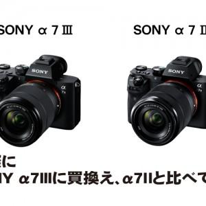 実際にSONY α7Ⅲに買換え、α7Ⅱと比べてみた